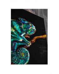chameleon-details